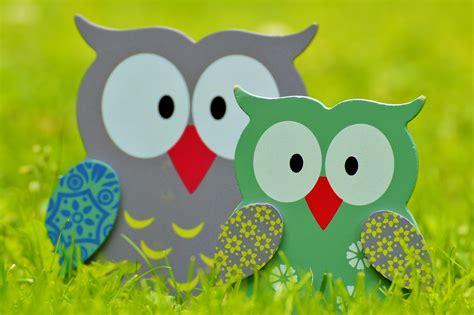 wallpaper animasi owl kumpulan gambar kartun owl hd kolek gambar