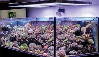 Ideas For Kitchen Lighting Fixtures best aquarium light in aug 2017 aquarium light reviews