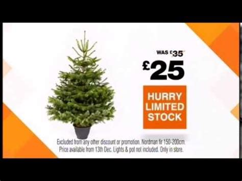 real christmas trees bq b q real northern fir tree 2014