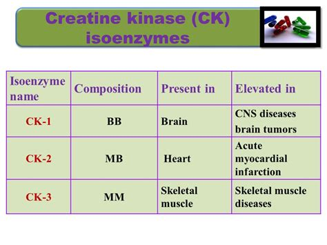 m creatine kinase enzymes biochemistry bms l noha soliman ppt