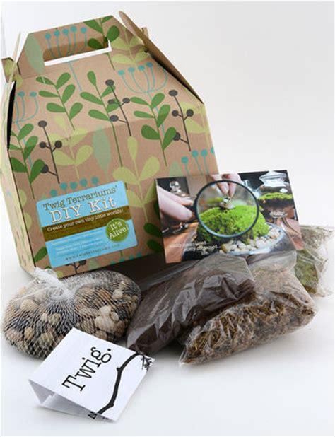 terrarium kit diy terrarium kits gardener s supply