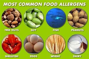 what is food allergy sneeze snooze clinic goshen mishawaka