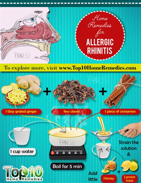 remedies for allergies home remedies for allergic rhinitis allergic rhinitis allergy symptoms and immune