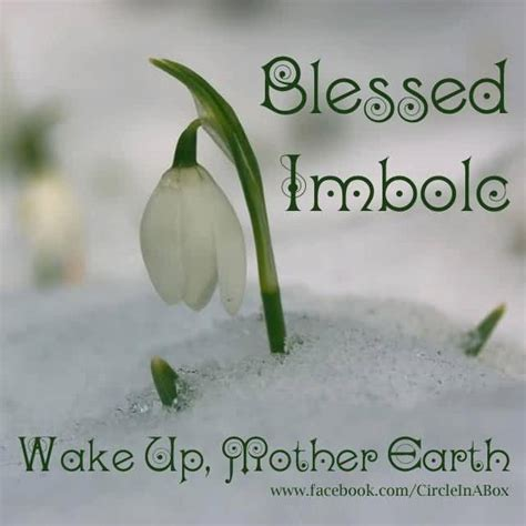 a blessed imbolc wishes