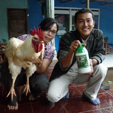 Pupuk Organik Di Grow Merah aplikasi digrow untuk ayam digrow indonesia