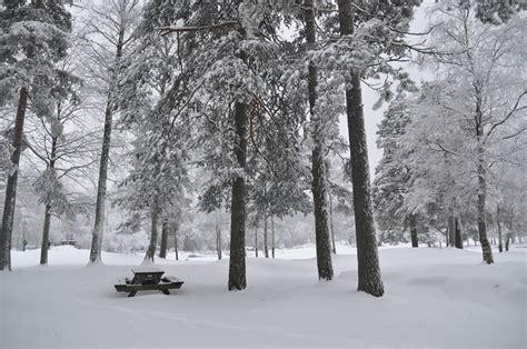 musim dingin di norwegia