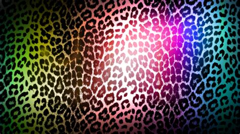 colorful cheetah print colorful leopard print wallpapers hd high definition