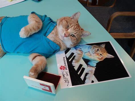 Keyboard Cat Meme - catsparella pawtographed keyboard cat pics hit the