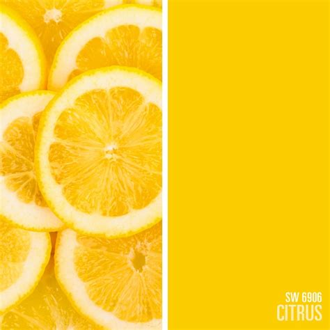 sherwin williams yellow paint color citrus sw 6906 paint colors paint colors