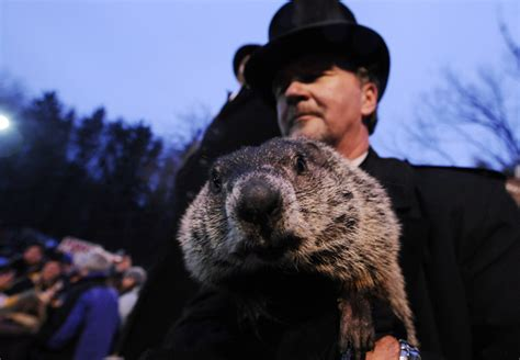 groundhog day radio charges dropped against punxsutawney phil minnesota