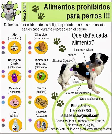 locos por los animales alimentos prohibidos  perros