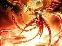 imagenes mitologicas yahoo 10 best el ave fenix images on pinterest the birds