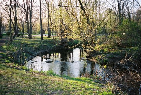 creek park cool creek park center for earth and environmental science