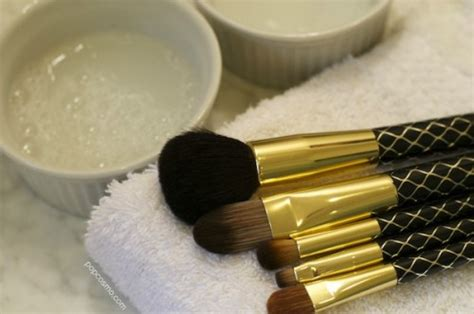 Clean Pop 2 In 1 Brush how to clean your makeup brushes popcosmo