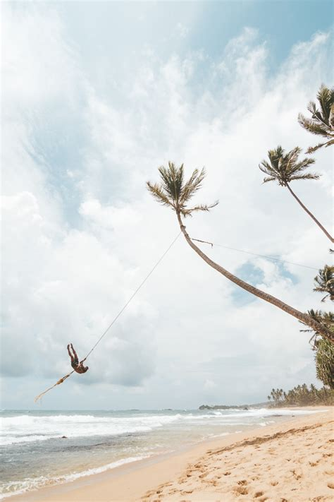 swing in the beach the palm tree rope swing at dalawella beach sri lanka