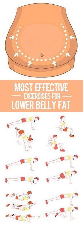 ideas   belly fat  pinterest
