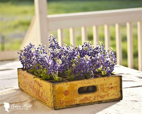Decorating Wine Bottles Creative Ideas On How To Re Purpose Old Wooden Crates