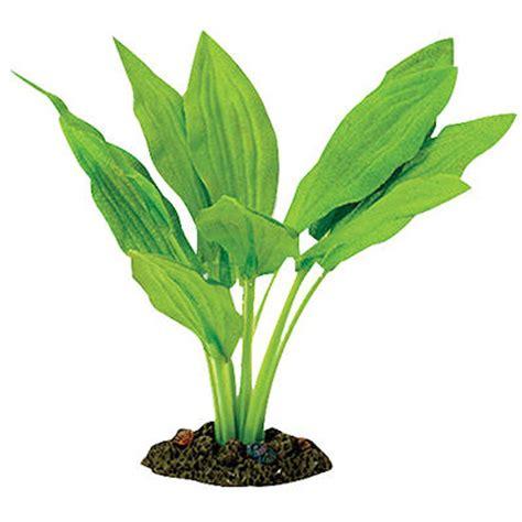 aqua one broad leaf amazon silk plant petbarn
