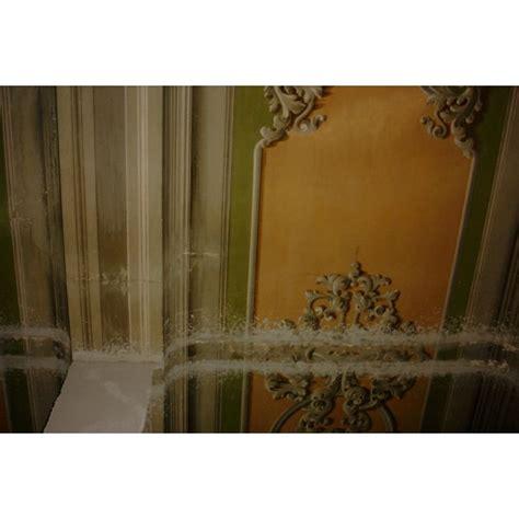 decori soffitto rirpristino decori a soffitto decorazioni graziano