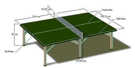 Meja Pingpong learn together table tennis measure