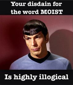 I Am Moist Meme - moist monday memes moist monday memes pinterest
