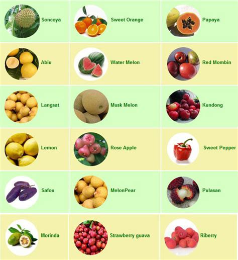 10 Foods Should Eat More by 10 Tricks On How To Eat More Vegetables And Fruits Health