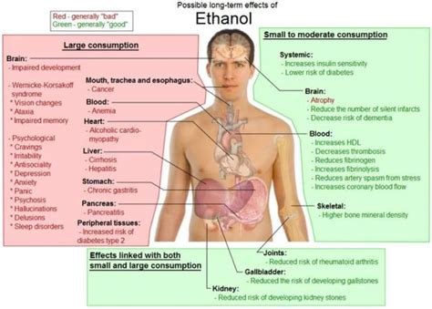 Does Alcholo Effect Detox From by Alcoholism Chronic And Progressive Health And Fitness