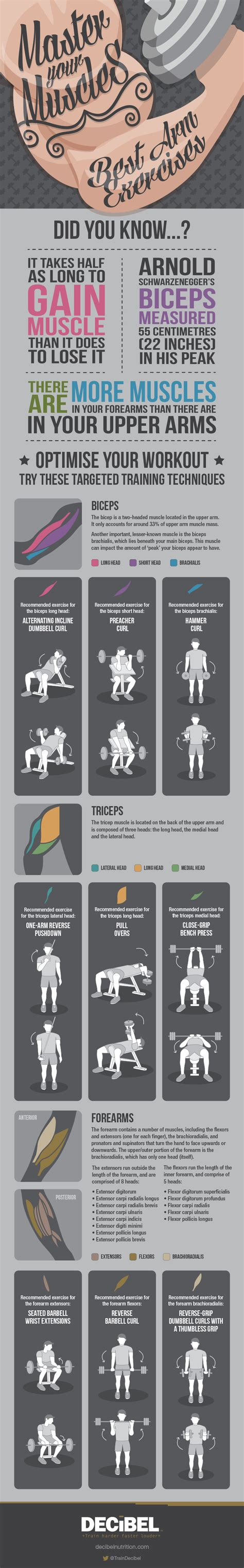 newspaper layout exercises infographic the best exercises for your arms and legs