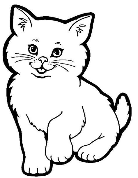 tiere für zuhause 11 besten katzen ausmalbilder bilder auf