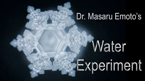 negative energy experiment dr masaru emoto s water experiment words are alive