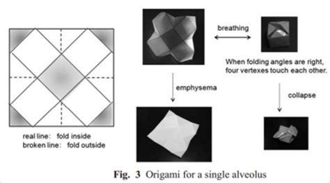 Origami Stent - origami tissue engineering openwetware
