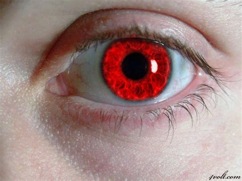 what is the rarest eye color rarest eye color in humans eye color is the rarest