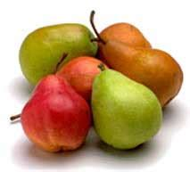 d anjou pear carbohydrates pear fruit nutrition facts bosc pear recipes seckel