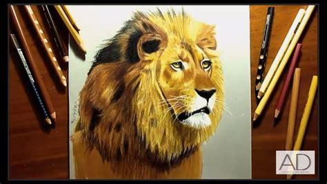 dibujos realistas con colores dibujo de leon a lapiz dibujo realista de leon dibujo