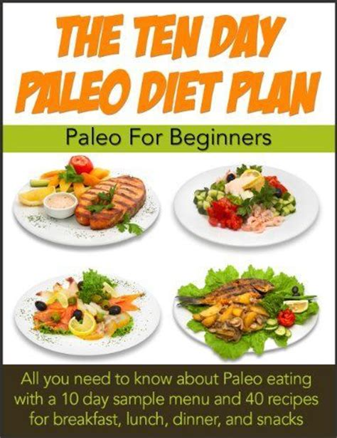 10 Best School Lunch Ideas For Losing Weight by 17 Best Images About Paleo Inspirations On
