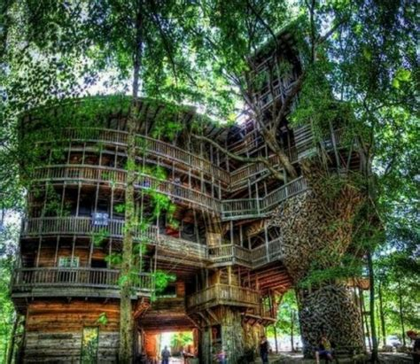 houses in tennessee tree house in tennessee cool places to go visit pinterest