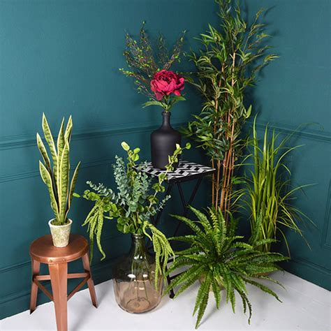 house plants uk botanical blooms the best artificial house plants ideal home