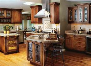 Custom Kitchen Design Ideas by Ideas For Custom Kitchen Cabinets Roy Home Design