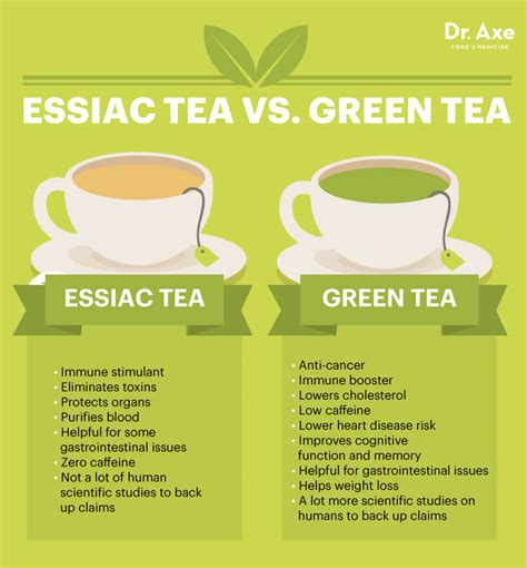 Detox Tea Vs Green Tea What S Better by Essiac Tea Fights Cancer Inflammation Dr Axe