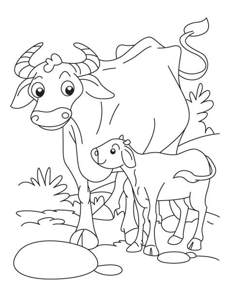 coloring pages farm animals and their babies buffalo with a calf coloring pages free buffalo
