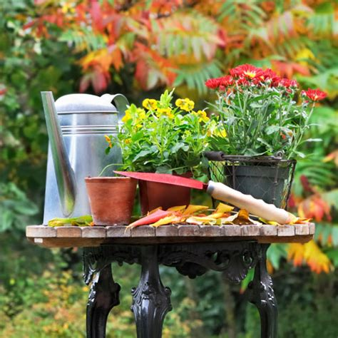 fall planters autumn fall colors decor