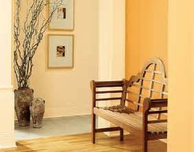 Best Paint For Interior by Best Orange Interior Paint Colors Ideas Interior Painting