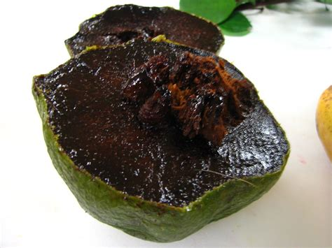 fruit sapote ingredient wednesday black sapote the chocolate
