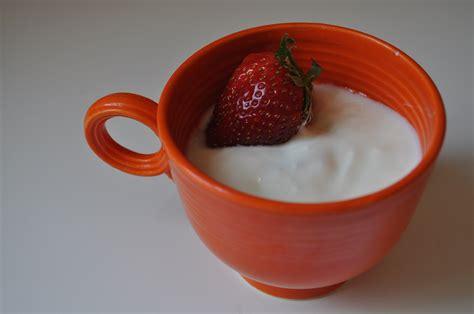 yogurt in your crockpot the adventures of