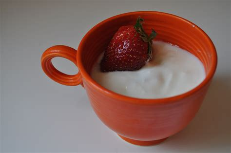 diy yogurt yogurt in your crockpot the adventures of thrive farm