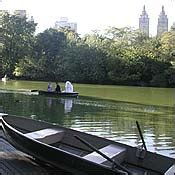 central park rowboat rental prices the central park lake scenic spots new york magazine