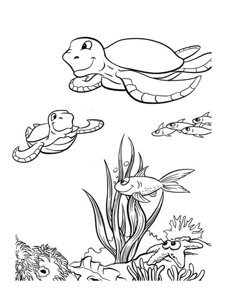 coloring pages sea animals coloring pages ocean life az coloring pages