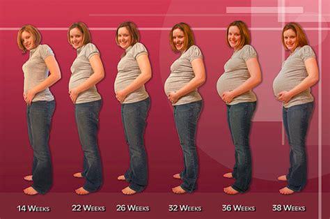 pregnancy symptoms week by week pregnancy symptoms week by week