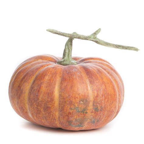 realistic artificial pumpkin table decor fall and