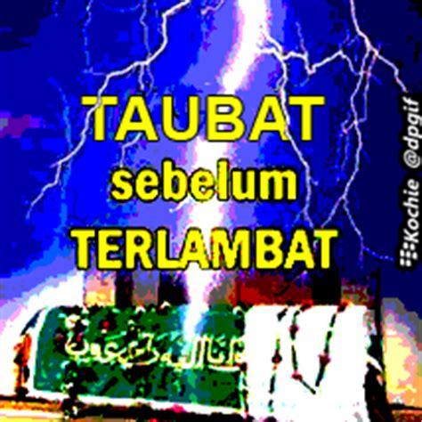dp bbm tidur bbm  bobo islami kochie frog